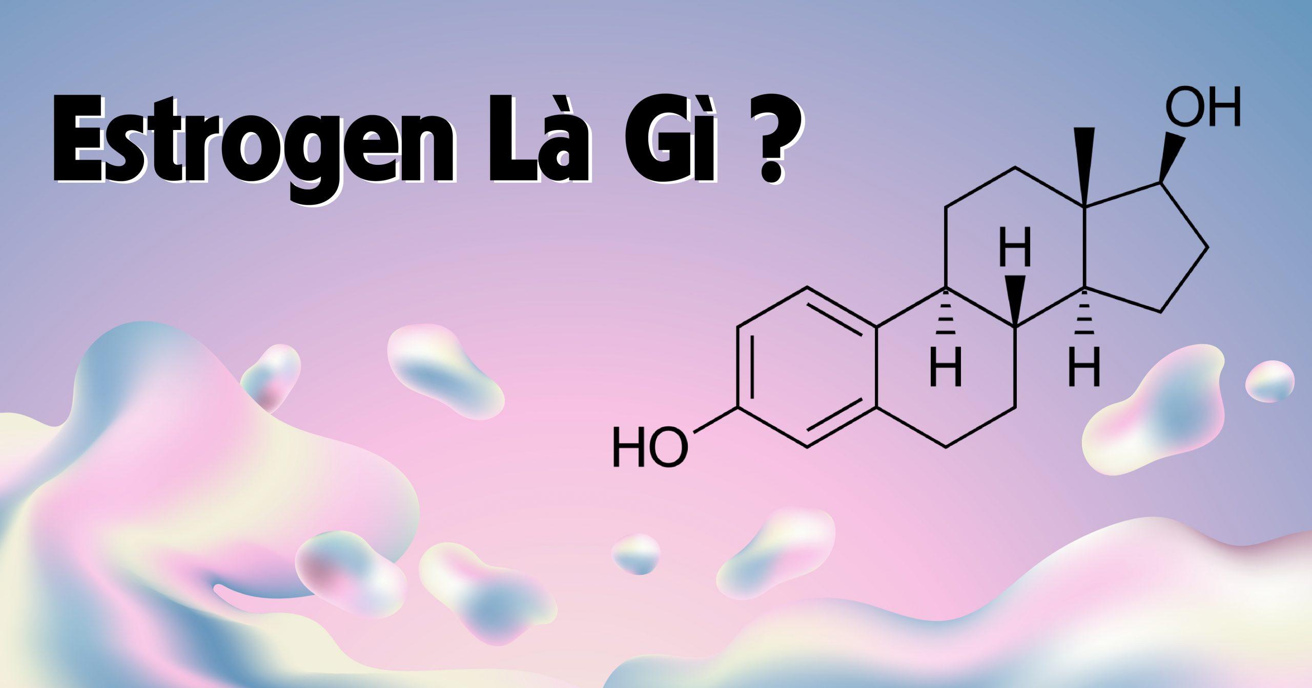 Vậy thực phẩm estrogen là gì