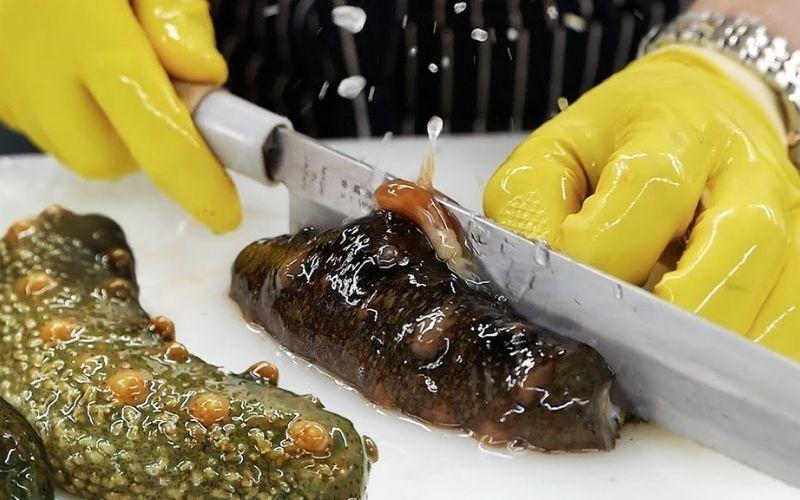 Cách chế biến và sử dụng rựu hải sâm chữa yếu sinh lý nam