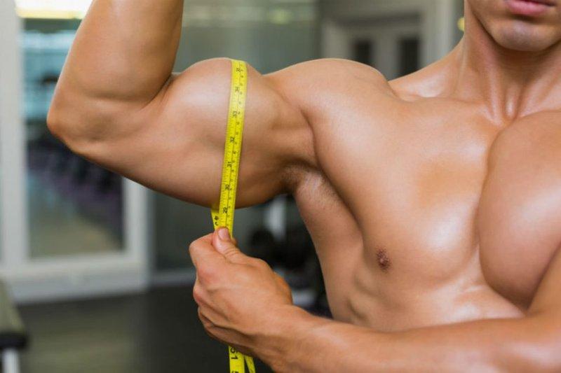 Cơ quan thứ tư đóng vai trò quan trọng trong việc tăng, giảm cân là cơ bắp.