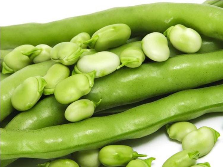 Trong các thực phẩm ăn rau gì giảm mỡ bụng thì đậu que được xếp đầu tiên