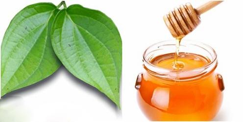 Hỗn hợp trị nám da bằng lá trầu + mật ong