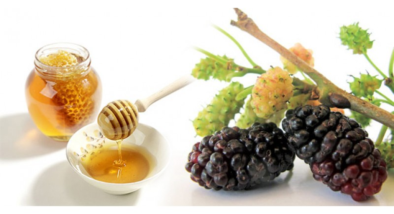 Làm trắng da lâu dài bằng lá dâu tằm và mật ong.